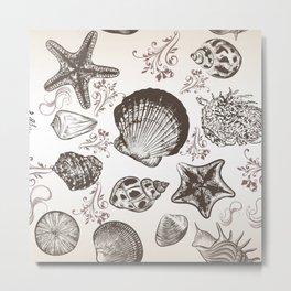 Sea shells in vintage style Metal Print