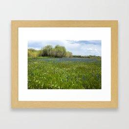 Field of Camas and Dandelions, No. 1 Framed Art Print