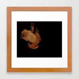 Window Frog Framed Art Print