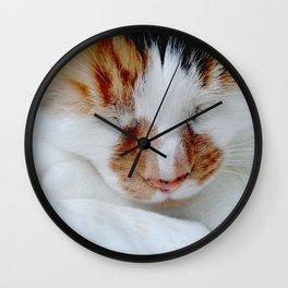 Pippa 2 Wall Clock