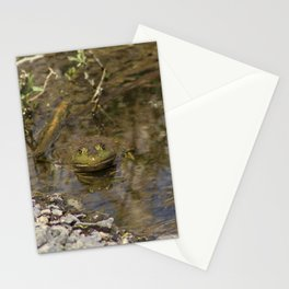 Whatcha Looking at Frog? Stationery Cards