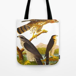 Goshawk Bird Tote Bag