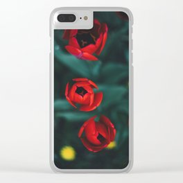 Red roses yellow Clear iPhone Case