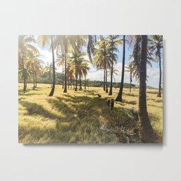 Barbados Palms Metal Print