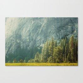 Yosemite Valley VII Canvas Print
