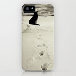 Winter landscape with dog  iPhone Case