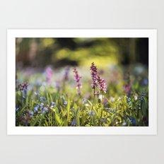 Spring flower meadow I Art Print