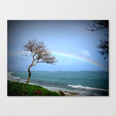 Kauai Rainbow Canvas Print