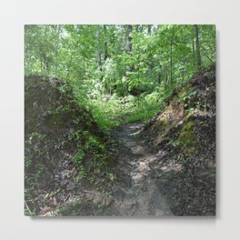 the path is wet and slippery Metal Print