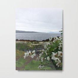 Alaska Flowers Metal Print