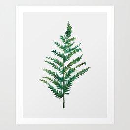 Bedraggled Fern Art Print