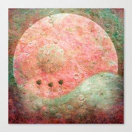 Flores De Luna Canvas Print