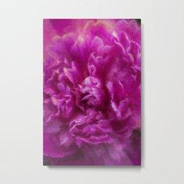 Peony ~ Paeonia ~ Pink Flower ~ Closeup ~ Ginkelmier Inspired Metal Print