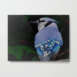 The need for seed Metal Print
