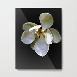 Magnolia on Black Metal Print