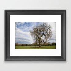 Lone tree Framed Art Print