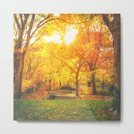 New York City - Autumn Sunset Metal Print