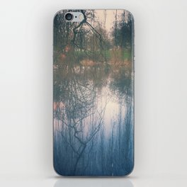 Under the weeping willow iPhone Skin