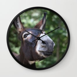 Smiling Ass Wall Clock