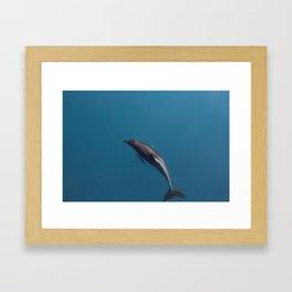 Kaikoura II Framed Art Print