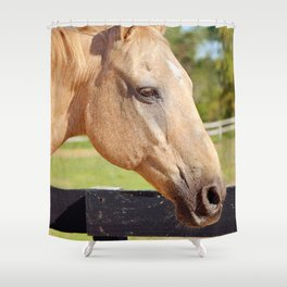 Sweetheart Bandit Shower Curtain