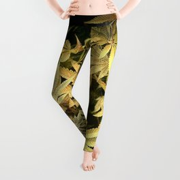 Yellow Cannabis Family Leggings