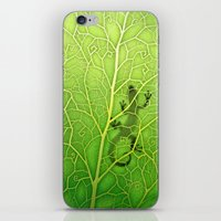 lizard iPhone & iPod Skins featuring lizard by Antracit