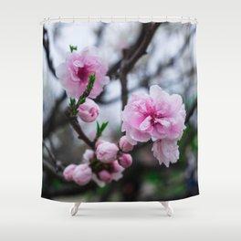 Sakura III Shower Curtain