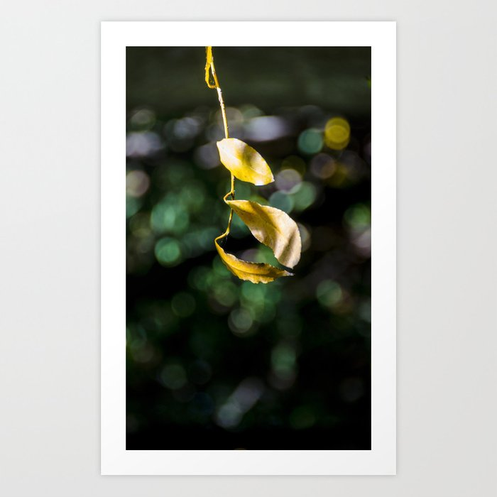 Yellow leaves in colorful bokeh Art Print