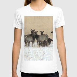 Cow Elk in a Bunch T-shirt