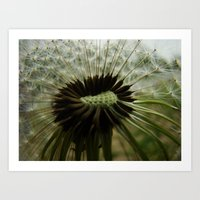 Art Print featuring Having a Closer Look by Jesika Anne