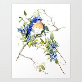 Bluebird and Blueberry Kunstdrucke