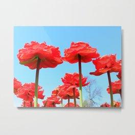 Red Beauties Metal Print