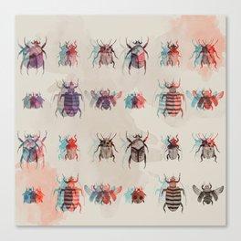 Beetles2 Canvas Print