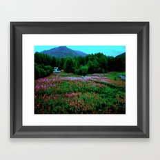 Alaskan Railroad  Framed Art Print