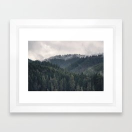 Pacific Northwest Forest - Nature Photography Framed Art Print