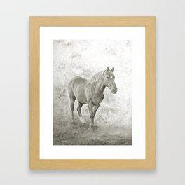 Black and white racehorse Framed Art Print