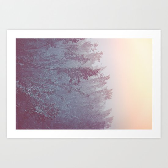 Forest Fog - Snowy Mountain Trees at Sunset Art Print