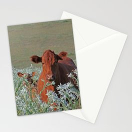 Cow Hide Stationery Cards