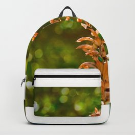 Beautiful floral stem rising up against a green and blue bokeh background Backpack