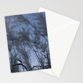 Soft Disclosure Stationery Cards