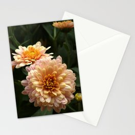 Colorful Flowers Bokeh Photo Stationery Cards