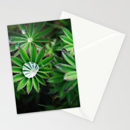 Lupines in Spring 4 Stationery Cards