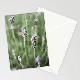 Lavendels Stationery Cards