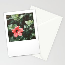 Red Hibiscus Rain Stationery Cards