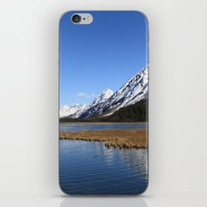 Tern Lake iPhone & iPod Skin
