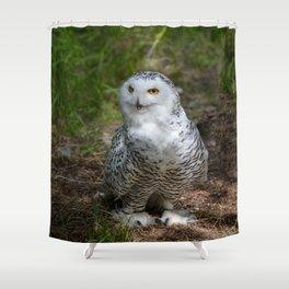 Alaskan Snowy Owl - Summer Shower Curtain