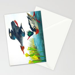 Red-breasted Merganser Bird Stationery Cards