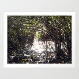 Lakeside Glimmer Art Print