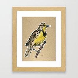 State Bird Series: Nebraska - Western Meadowlark Framed Art Print